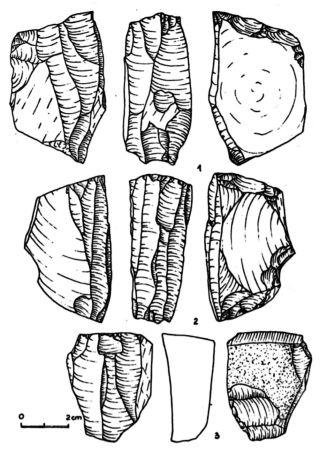 peleolit