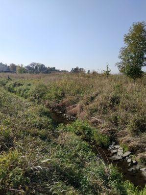 Potok Mikulczycki